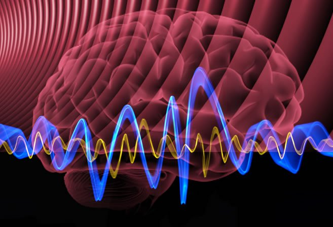 Inducing Higher Intelligence and Heightened Senses with Gamma Brain Waves
