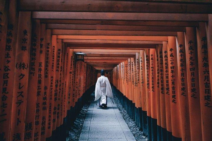 Gorgeous Rich Culture Of Japan!