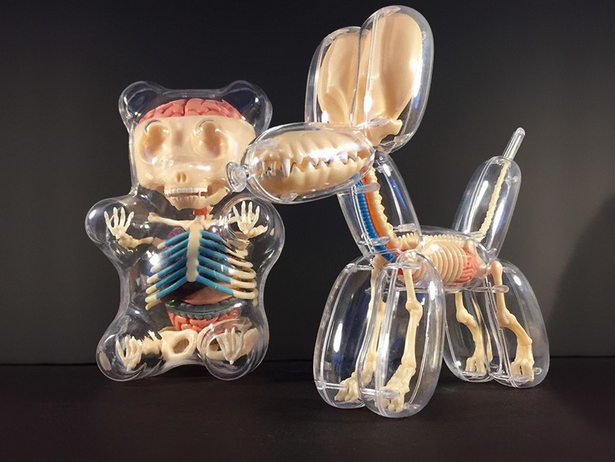 Balloon Anatomy By Jason Freeny