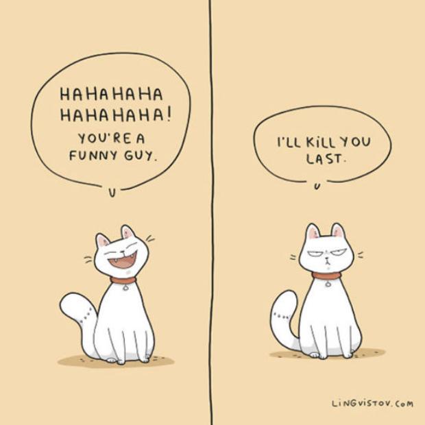 Brilliant-Animal-Comics-16